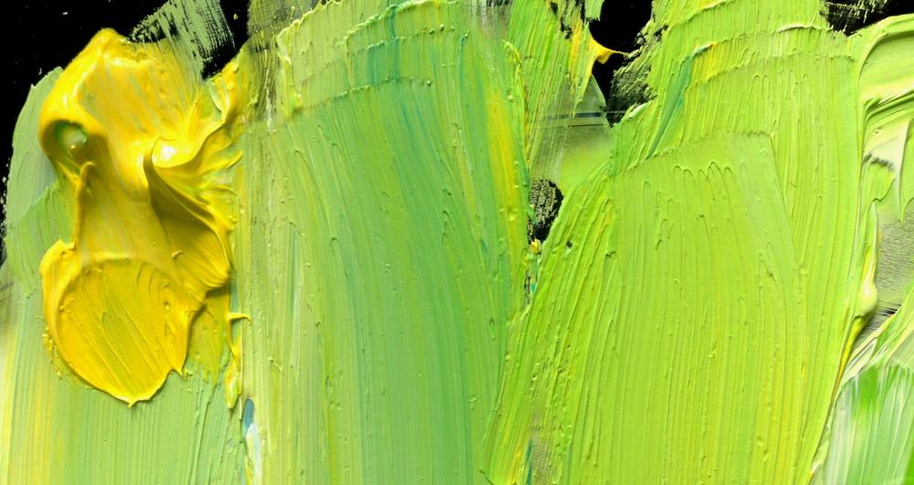 Buchfink Ölmalerei Farbpalette